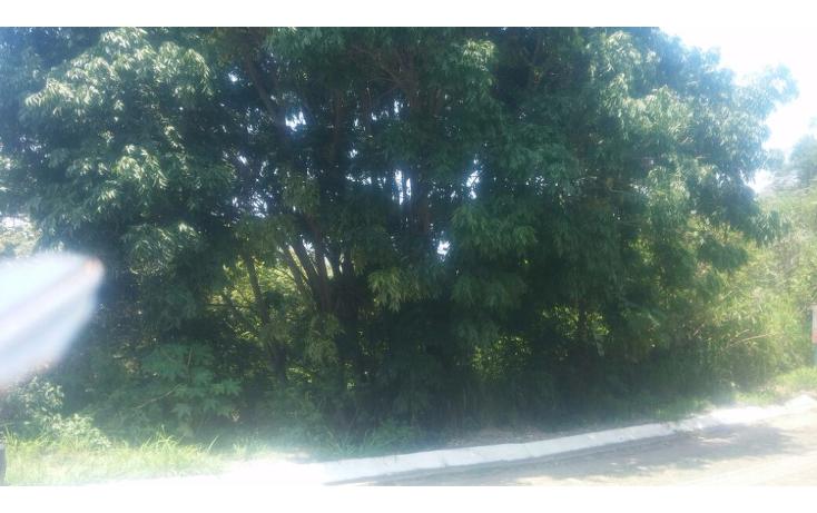 Foto de terreno habitacional en venta en  , las cañadas, zapopan, jalisco, 1186833 No. 01