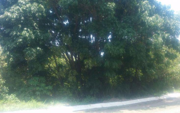 Foto de terreno habitacional en venta en, las cañadas, zapopan, jalisco, 1186833 no 05