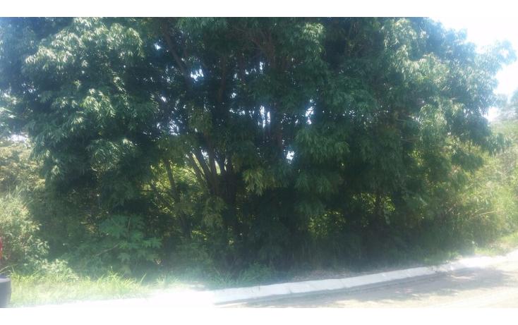 Foto de terreno habitacional en venta en  , las cañadas, zapopan, jalisco, 1186833 No. 05