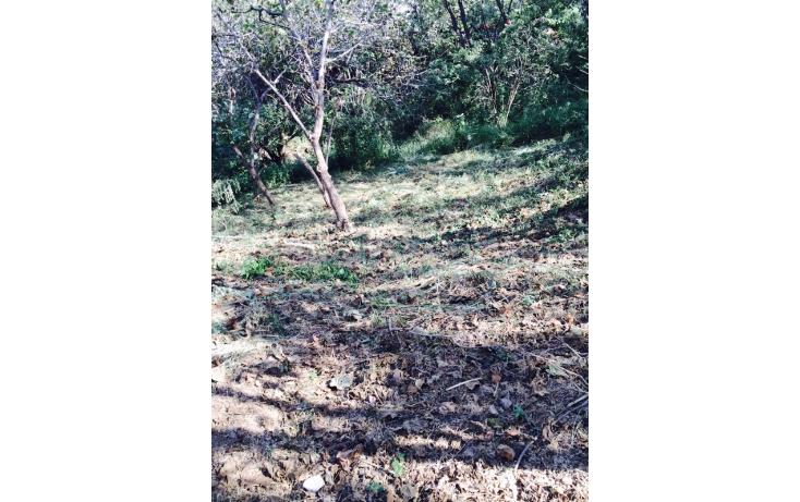 Foto de terreno habitacional en venta en  , las cañadas, zapopan, jalisco, 1249561 No. 07