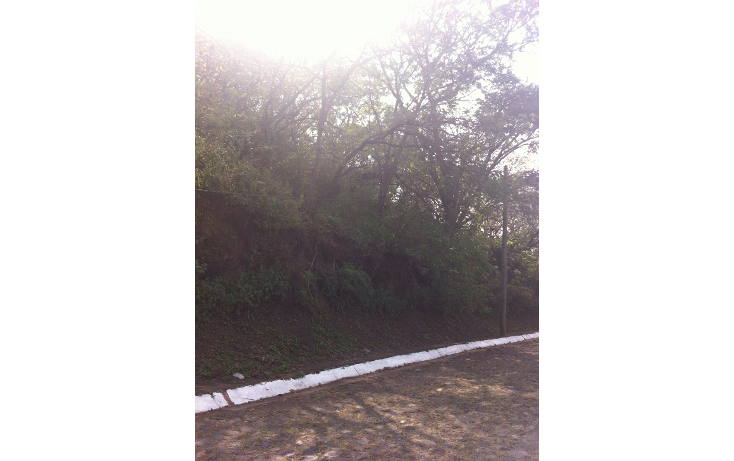 Foto de terreno habitacional en venta en  , las cañadas, zapopan, jalisco, 1285545 No. 02