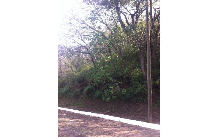 Foto de terreno habitacional en venta en  , las cañadas, zapopan, jalisco, 1285545 No. 03