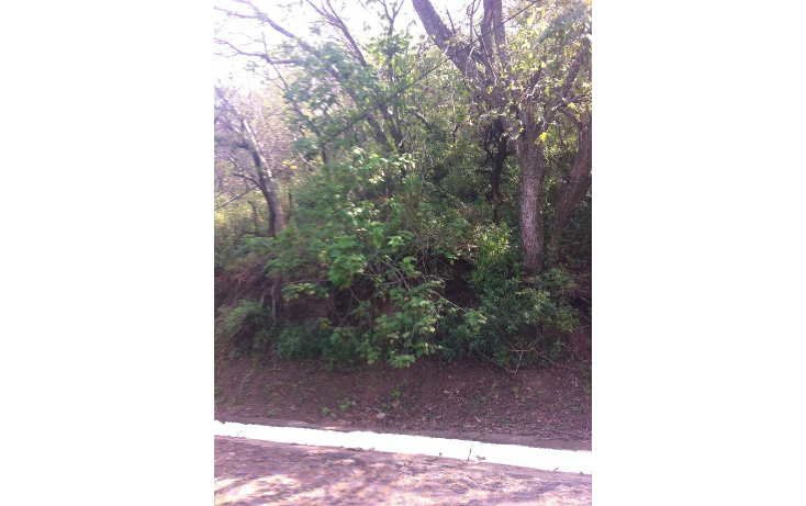 Foto de terreno habitacional en venta en  , las cañadas, zapopan, jalisco, 1285545 No. 05