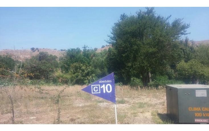 Foto de terreno habitacional en venta en  , las cañadas, zapopan, jalisco, 1289721 No. 01