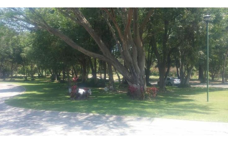 Foto de terreno habitacional en venta en  , las ca?adas, zapopan, jalisco, 1289721 No. 05