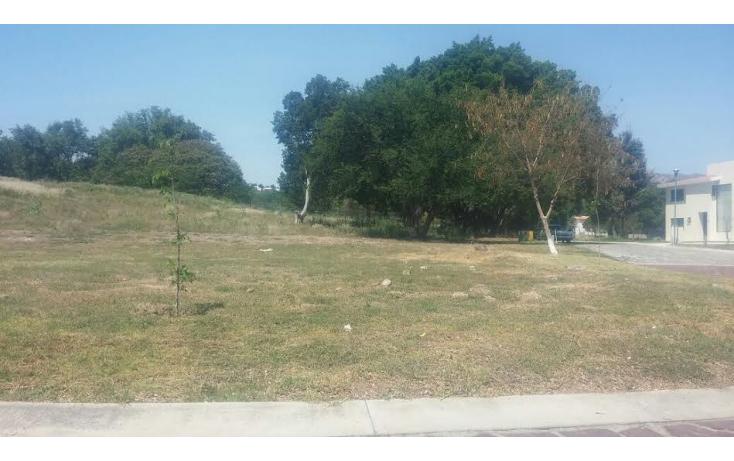 Foto de terreno habitacional en venta en  , las ca?adas, zapopan, jalisco, 1289721 No. 06