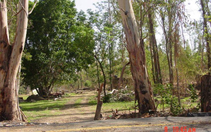 Foto de terreno habitacional en venta en, las cañadas, zapopan, jalisco, 1290255 no 04