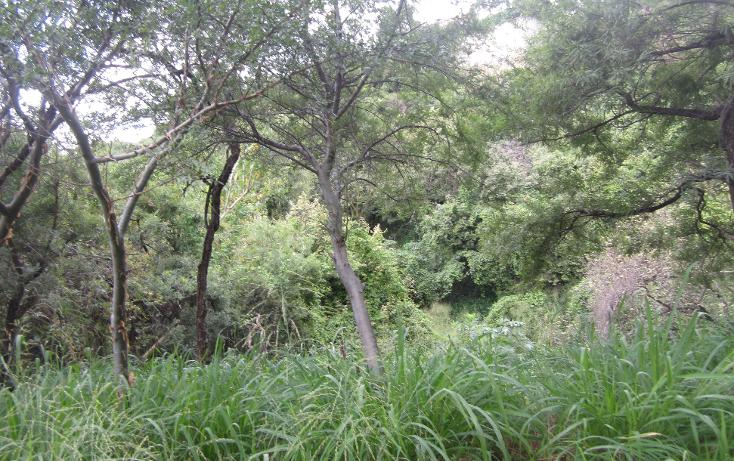 Foto de terreno habitacional en venta en  , las cañadas, zapopan, jalisco, 1311649 No. 02