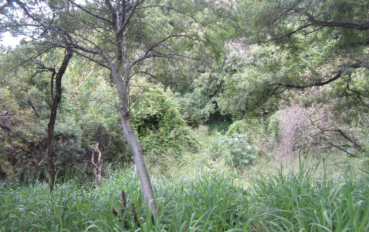 Foto de terreno habitacional en venta en  , las cañadas, zapopan, jalisco, 1311649 No. 04