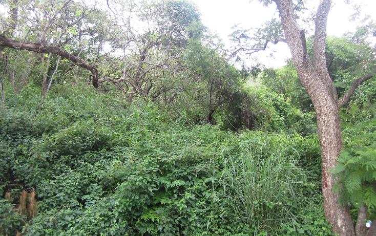 Foto de terreno habitacional en venta en  , las cañadas, zapopan, jalisco, 1311649 No. 06