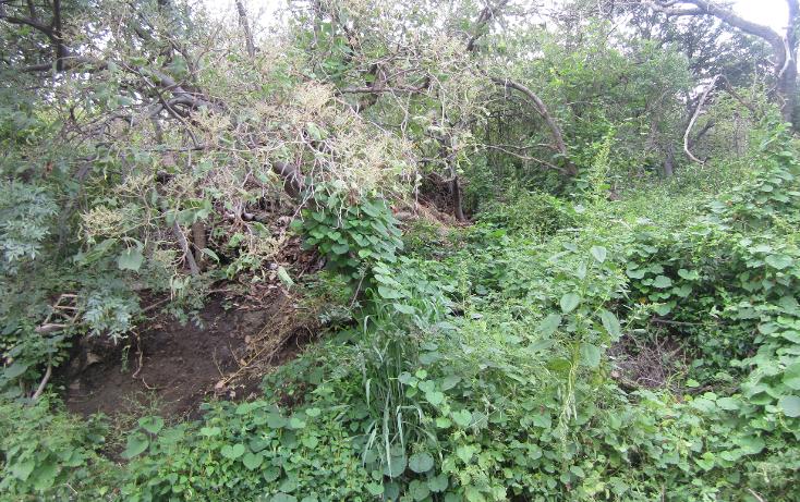 Foto de terreno habitacional en venta en  , las cañadas, zapopan, jalisco, 1311649 No. 08
