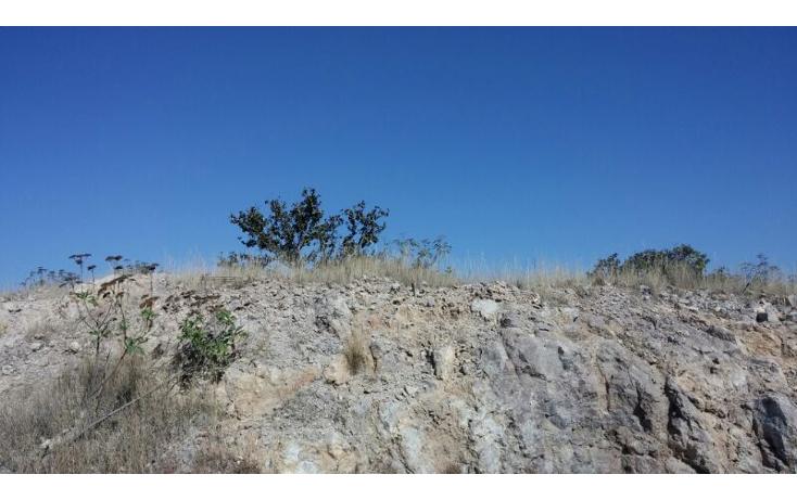 Foto de terreno habitacional en venta en  , las cañadas, zapopan, jalisco, 1312409 No. 01