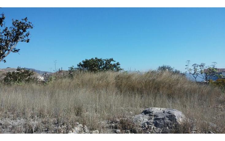Foto de terreno habitacional en venta en  , las cañadas, zapopan, jalisco, 1312409 No. 05