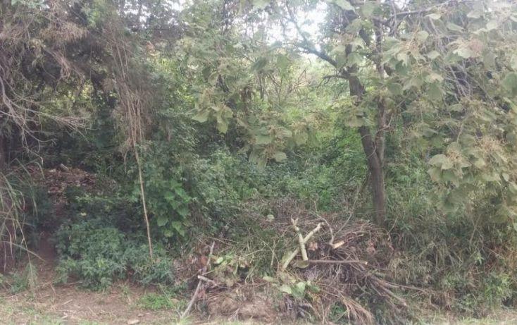 Foto de terreno habitacional en venta en, las cañadas, zapopan, jalisco, 1313815 no 05