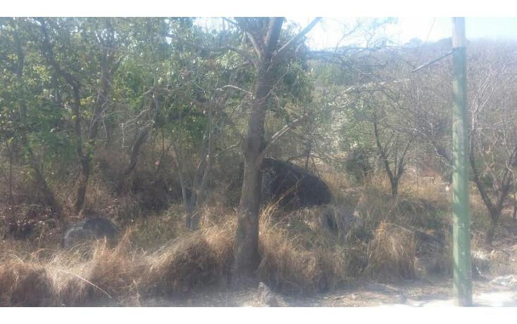 Foto de terreno habitacional en venta en  , las cañadas, zapopan, jalisco, 1314675 No. 03