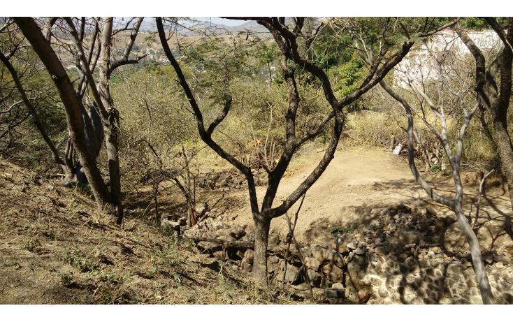 Foto de terreno habitacional en venta en  , las cañadas, zapopan, jalisco, 1665364 No. 01