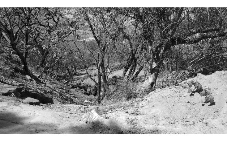 Foto de terreno habitacional en venta en  , las cañadas, zapopan, jalisco, 1665364 No. 03