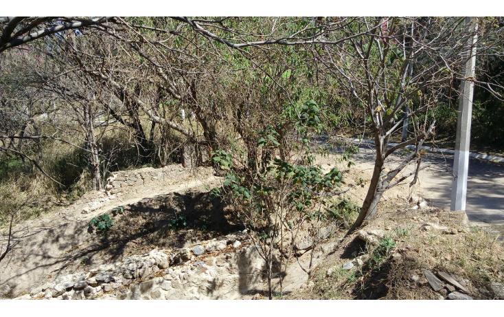 Foto de terreno habitacional en venta en  , las cañadas, zapopan, jalisco, 1665364 No. 06