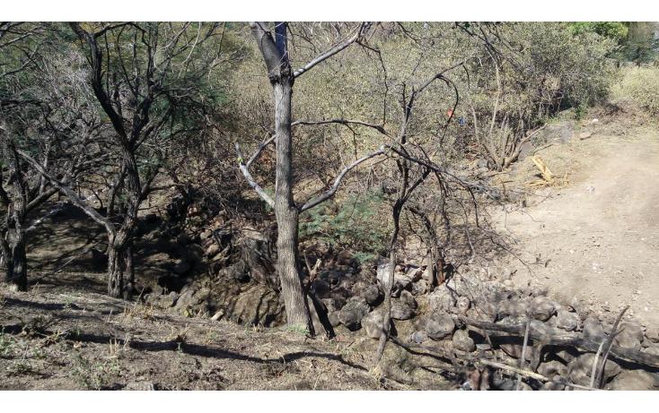 Foto de terreno habitacional en venta en  , las cañadas, zapopan, jalisco, 1665364 No. 07