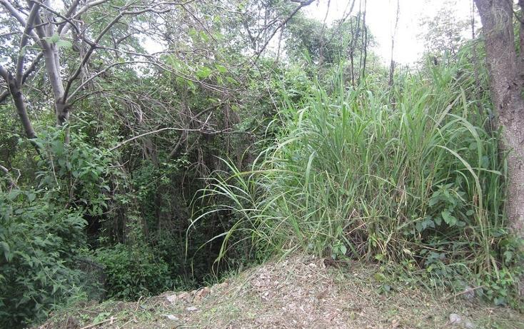 Foto de terreno habitacional en venta en  , las cañadas, zapopan, jalisco, 452432 No. 06