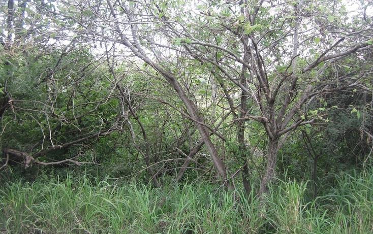 Foto de terreno habitacional en venta en  , las cañadas, zapopan, jalisco, 452432 No. 07