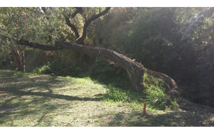 Foto de terreno habitacional en venta en, las cañadas, zapopan, jalisco, 586211 no 03