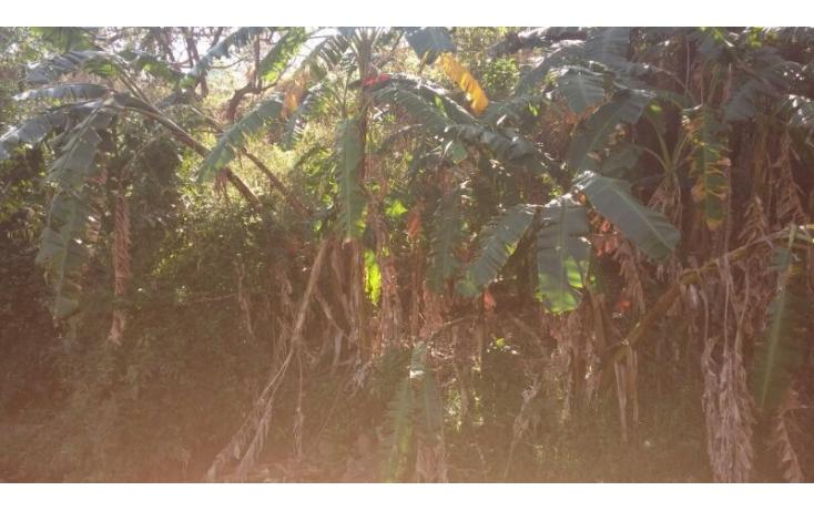 Foto de terreno habitacional en venta en, las cañadas, zapopan, jalisco, 586211 no 04