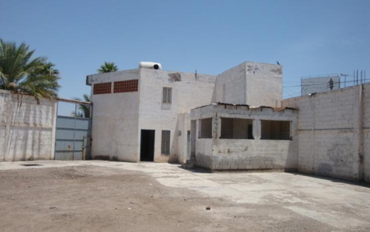 Foto de nave industrial en venta en  , las carolinas, torreón, coahuila de zaragoza, 981873 No. 02