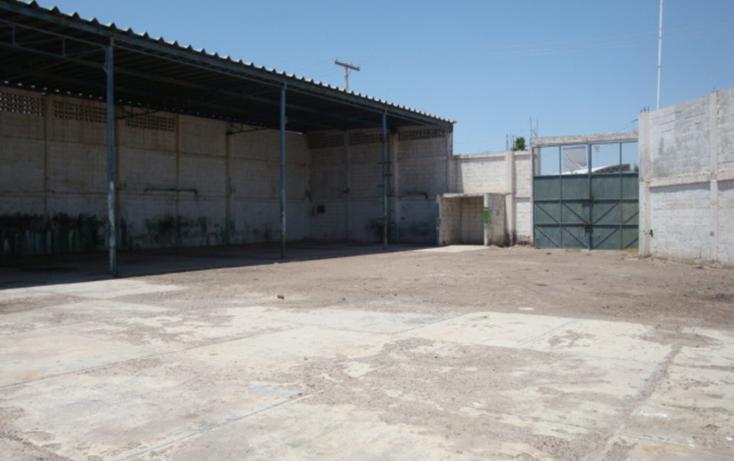 Foto de nave industrial en venta en  , las carolinas, torreón, coahuila de zaragoza, 981873 No. 03