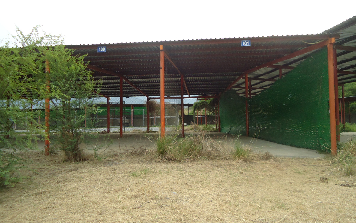 Foto de terreno habitacional en venta en  , las cristalinas, santiago, nuevo león, 1093933 No. 02