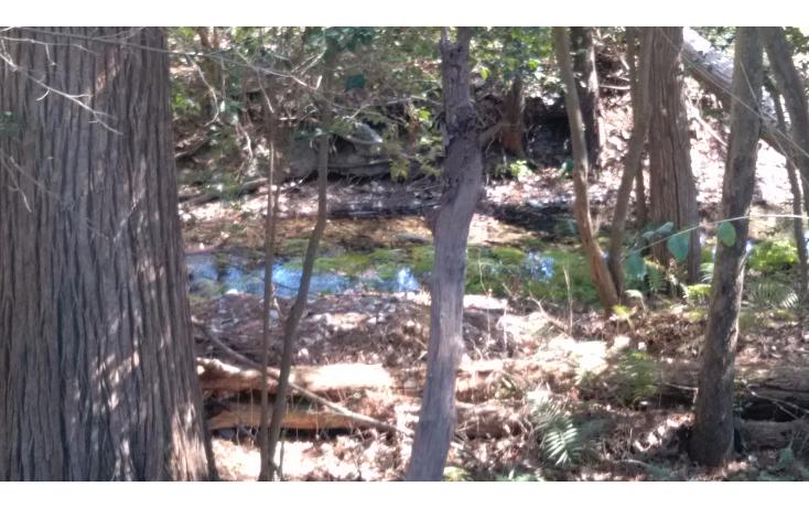 Foto de terreno habitacional en venta en  , las cristalinas, santiago, nuevo león, 1256607 No. 05