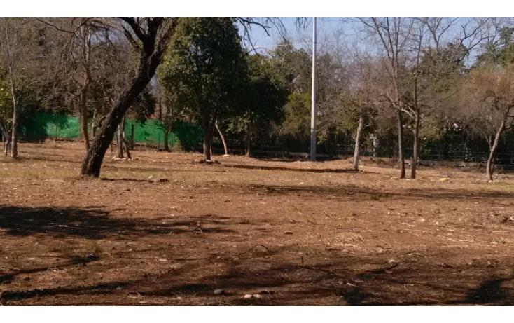 Foto de terreno habitacional en venta en  , las cristalinas, santiago, nuevo león, 1256607 No. 06