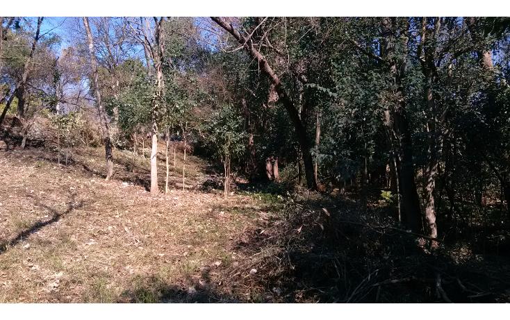 Foto de terreno habitacional en venta en  , las cristalinas, santiago, nuevo león, 1256607 No. 08