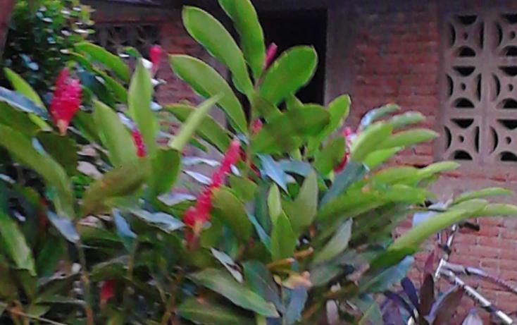Foto de casa en venta en  , las cruces, acapulco de juárez, guerrero, 1328389 No. 04