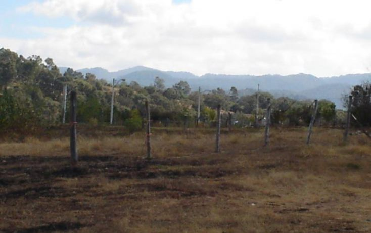 Foto de terreno habitacional en venta en, las cruces, morelia, michoacán de ocampo, 1535942 no 10