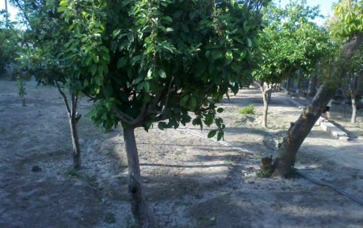 Foto de rancho en venta en  , las cuevas, lerdo, durango, 399302 No. 02