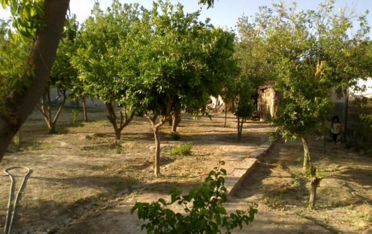 Foto de rancho en venta en  , las cuevas, lerdo, durango, 399302 No. 03