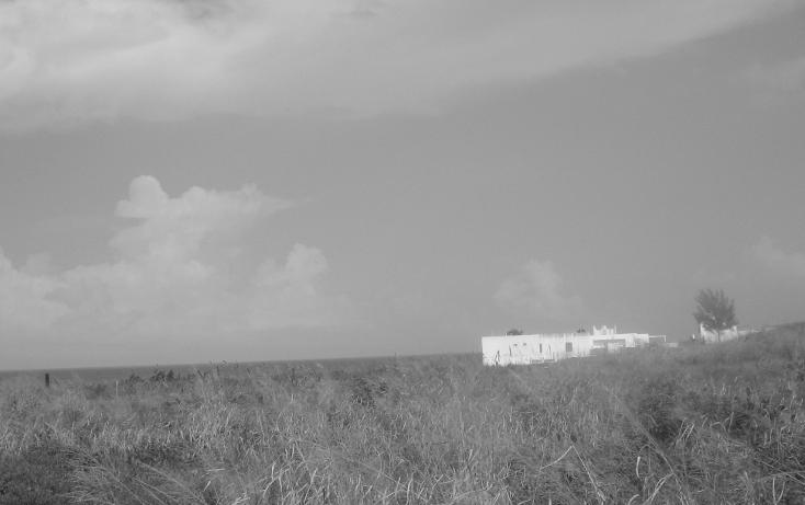 Foto de terreno habitacional en venta en  , las dunas, ciudad madero, tamaulipas, 1145021 No. 01