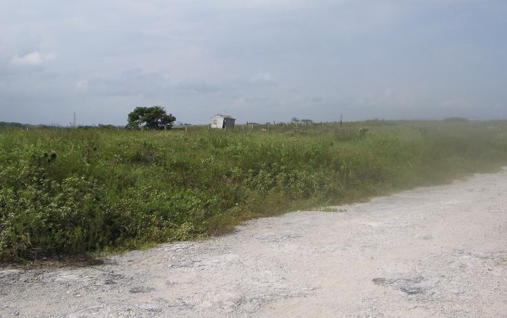 Foto de terreno habitacional en venta en  , las dunas, ciudad madero, tamaulipas, 1145021 No. 02