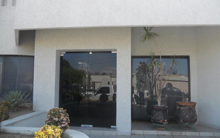 Foto de oficina en renta en  , las garzas, la paz, baja california sur, 1128645 No. 02
