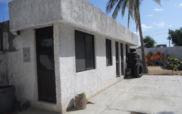 Foto de oficina en renta en  , las garzas, la paz, baja california sur, 1128645 No. 22