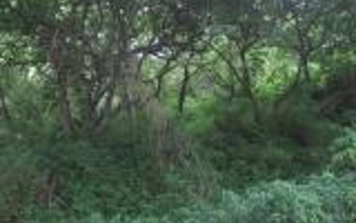 Foto de terreno habitacional en venta en  , las golondrinas, zapopan, jalisco, 452410 No. 01