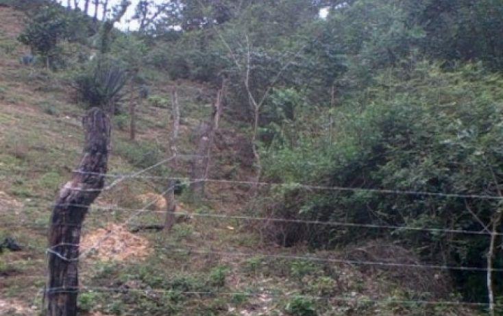 Foto de terreno habitacional en venta en las juntas y los veranos, chacala, cabo corrientes, jalisco, 1706070 no 04