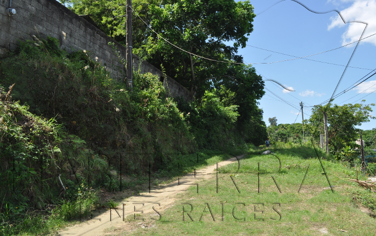 Foto de terreno habitacional en venta en  , las lomas, tuxpan, veracruz de ignacio de la llave, 1162189 No. 07