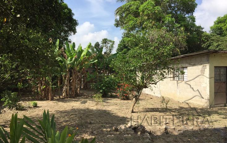Foto de terreno habitacional en venta en  , las lomas, tuxpan, veracruz de ignacio de la llave, 1199987 No. 05