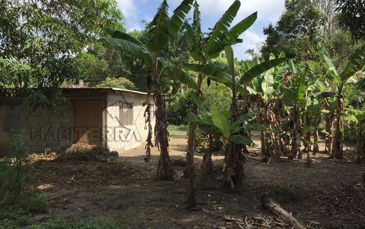 Foto de terreno habitacional en venta en  , las lomas, tuxpan, veracruz de ignacio de la llave, 1199987 No. 07
