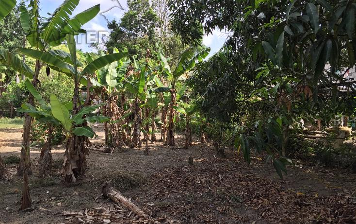 Foto de terreno habitacional en venta en  , las lomas, tuxpan, veracruz de ignacio de la llave, 1199987 No. 09