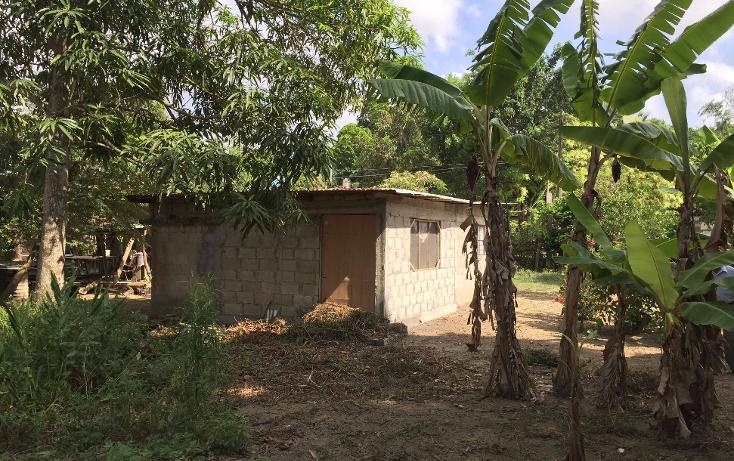 Foto de terreno habitacional en venta en  , las lomas, tuxpan, veracruz de ignacio de la llave, 1199987 No. 10