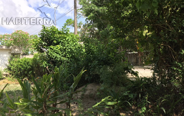 Foto de terreno habitacional en venta en  , las lomas, tuxpan, veracruz de ignacio de la llave, 1199987 No. 11