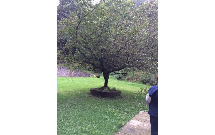Foto de casa en venta en  , las manzanas, jilotzingo, méxico, 1244465 No. 13
